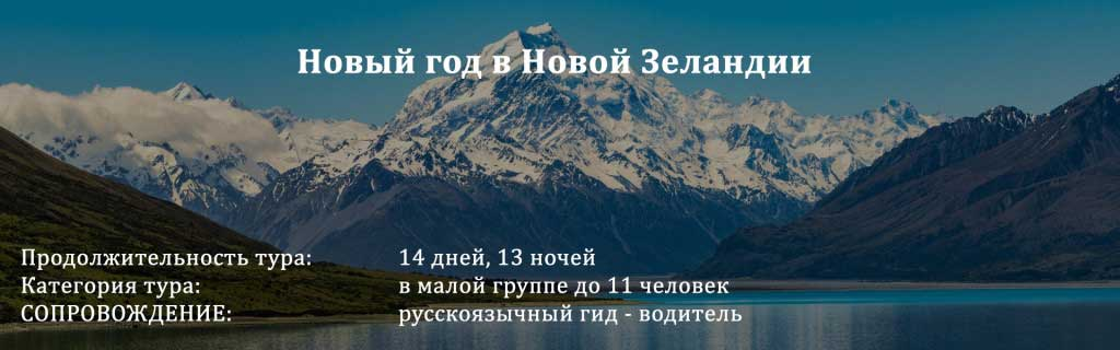 Novyy_god
